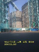 进口大豆港口价格 批发 出油率高 出浆率高