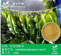 海带粉 膳食纤维 昆布粉  褐藻多糖  厂家1公斤起订