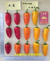 黄咪咪水果椒种子