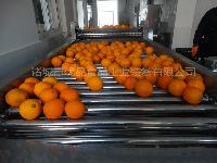 厂家热销蔬菜高压喷淋清洗机 气泡喷淋蔬菜清洗机