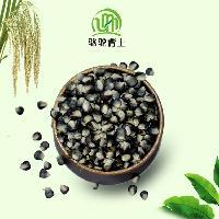 绿色健康粗粮有机黑玉米450G/袋