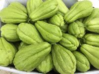 农产品蔬菜食材配送一站式采购配送食堂配送服务--佛手瓜