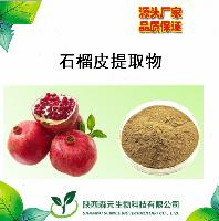 石榴皮提取物 40% 鞣花酸 涩肠止泻,止血,驱虫的效用 厂家直销