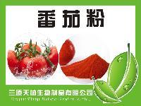 番茄粉  纯天然无添加