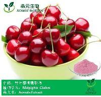 针叶樱桃提取物 樱桃提取物 樱桃粉 优质现货