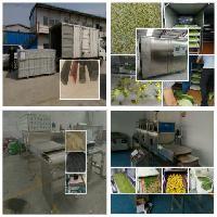 地瓜高温空气能热泵烘干机