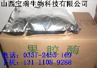 山西果胶酶生产厂家太原果胶酶价格