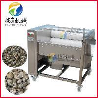 供应小型土豆清洗去皮机 芋头莲藕去皮机 大中小型去皮机价格