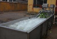 山野菜清洗机/气泡喷淋清洗机