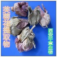 芙蓉花提取物厂家生产芙蓉花水溶粉