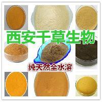 莱菔子提取物水溶粉无添加厂家直销