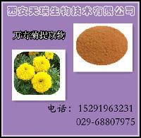 万寿菊提取物  叶黄素