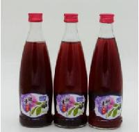 蓝百蓓300ml野生蓝莓酵素果汁饮料