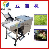 厂家研发商用自动豆芽机 菜芽苗机 可调速豆苗机