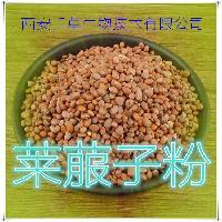 莱菔子提取物纯天然植物提取厂家生产