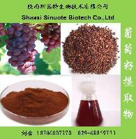 葡萄籽粉的生产厂家