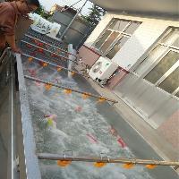 供应链板式冷却池 食品厂漂烫冷却设备 香菇