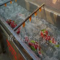 水果清洗机 连续式气泡清洗机 苹果清洗机