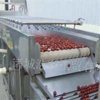 毛辊毛刷清洗机 土豆萝卜清洗机 果蔬去皮去