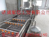 南瓜子清洗烘干流水线(清洗机)