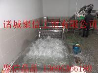 小松菜网带输送式清洗机