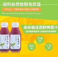 原本果子NFC鲜榨*蓝莓纯果汁 低温300ml*24瓶/件