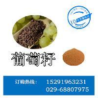 葡萄籽提取物 原花青素95%