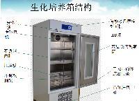 生化培养箱报价/博科生化培养箱SPX-250报价