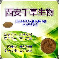 白花蛇舌草提取物厂家生产天然提取物白花蛇舌草粉