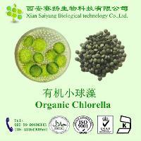 赛扬供应 100% 纯天然有机小球藻粉/片 质量保证 提高免疫力