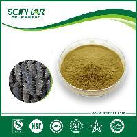 源头工厂海参提取物海参肽粉50%海参蛋白粉优质海参肽提取物