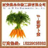 胡萝卜提取物 β-胡萝卜素1% 天然植物色素