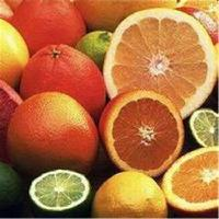 葡萄柚浓缩粉 厂家现货包邮