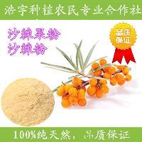 沙棘粉 药食同源 食品保健品专用