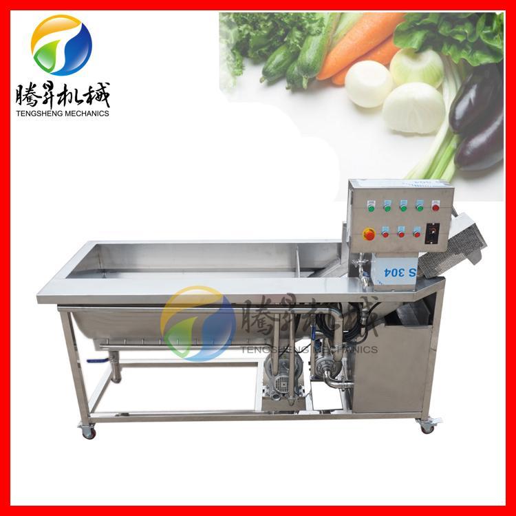 氣泡清洗機 中型自動洗菜機 蔬菜水果清洗機廠家