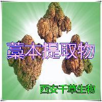 女贞子粉提取物厂家生产动植物提取物 厂家定制纯浸膏