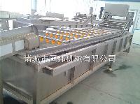 毛豆风选机 毛豆加工成套设备