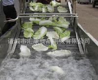 供应蔬菜气泡喷淋清洗机,QX-3米韭菜清洗机