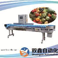 水果蔬菜自动分选机 在线称重分选