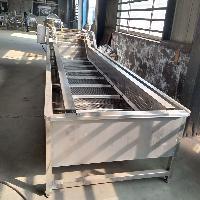 毛豆风选清洗流水线设备厂家