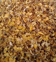 野山菌土特产东北野生蘑菇干货小黄蘑