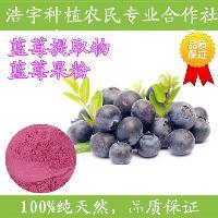 蓝莓粉 食品固体饮料原料