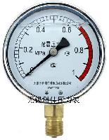 耐震双刻度压力表型号规格,量程,精度,安装螺纹