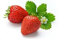 草莓浓缩浆