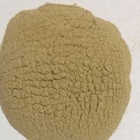 桑白皮多糖50% 可定做 厂家包邮 专业提取