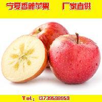 供应宁夏香麓苹果绿色有机水果红富士苹果纯天然无污染
