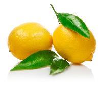 维他柠檬汁