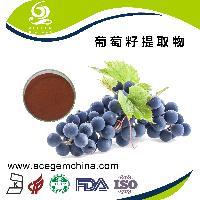 葡萄籽提取物 原花青素95%,艾森格生物 出厂价