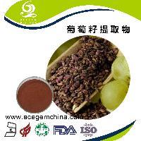 葡萄籽提取物 葡萄籽提取物*艾森格生物