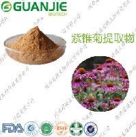 冠捷生物 紫锥菊提取物.菊苣酸 4%现货销售